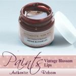 415162 - Paint :  AR Premixed Vintage Lips -Soon available