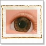 7506 - Eyes :  HQ acryl ogen Dark Brown