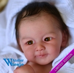 AW300347 - Dollkit 20 - Henry - 1st Edition - € 109,90 - Pre Order
